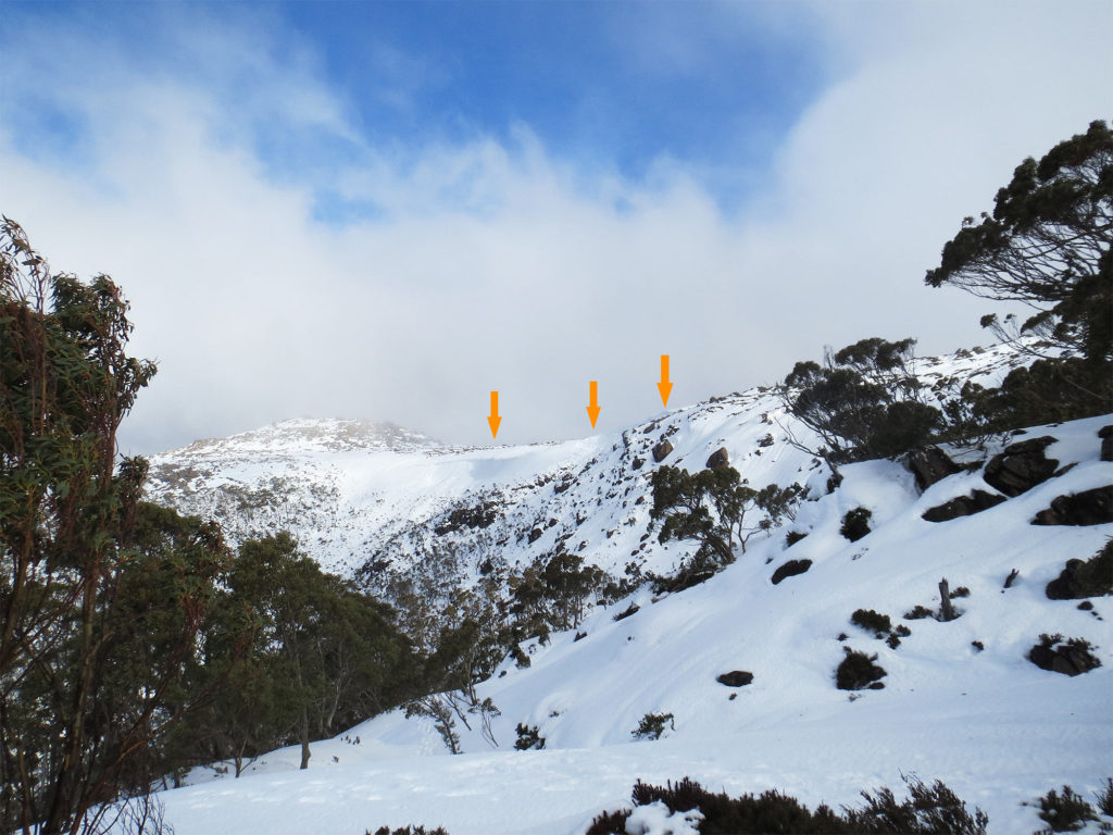 image of the Overview of the Mount Mawson cornice