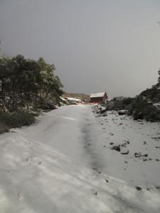 Jeep Trail to Mt  Mawson Ski Field 19 April 2015