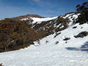 A spectacular day - Mt Mawson Golden Stairs