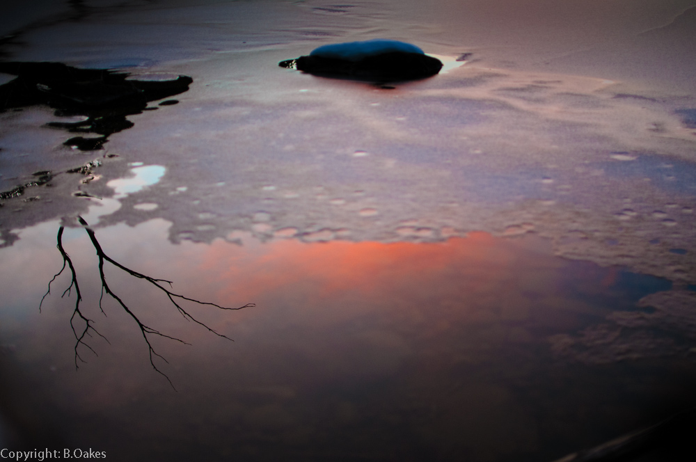 image of Lake Dobson ice and reflections at sunset